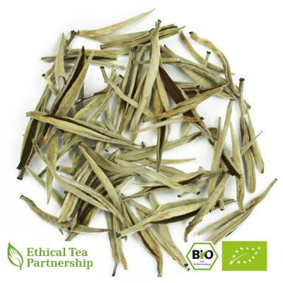 Weißer Tee CHINA YIN ZHEN SILVERNEEDLE ORGANIC BIO von alveus® Rarities bei tee-design.eu im Online-Shop kaufen.